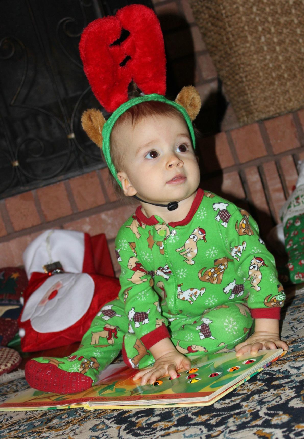 Tyson - Reindeer